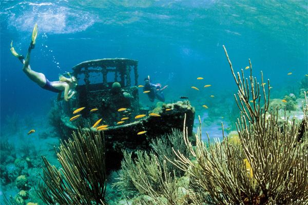Ныряльщики и рыбы возле затонувшего буксира, окруженного и обросшего кораллами, недалеко от острова Кюрасао в Карибском море. У берегов этого острова американские исследователи провели опыты, результаты которых свидетельствуют о том, что выделяемый планктоном диметилсульфониопропионат привлекает рыб, обитающих возле коралловых рифов. Фото с сайта www.caradonna.com